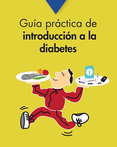 Guía práctica de introducción a la diabetes