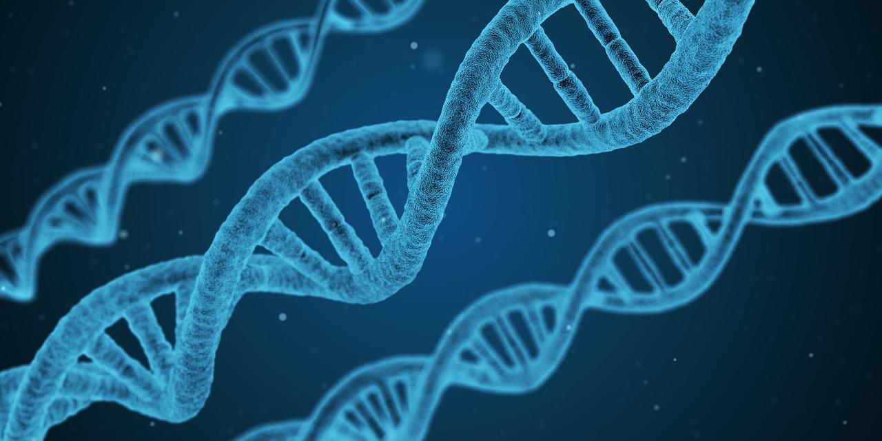 Terapia genética en la diabetes